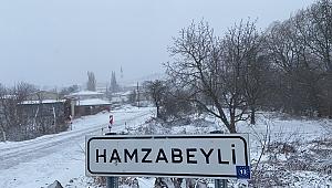 HAMZABEYLİ'DE KAR, EDİRNE'DE AYAZ