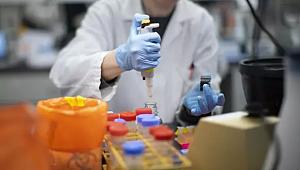 Koronavirüs vaka ve ilaçlarına yönelik flaş karar