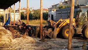 EDİRNE'DE 3 BİNE YAKIN KURBAN DERİSİ TOPLANDI