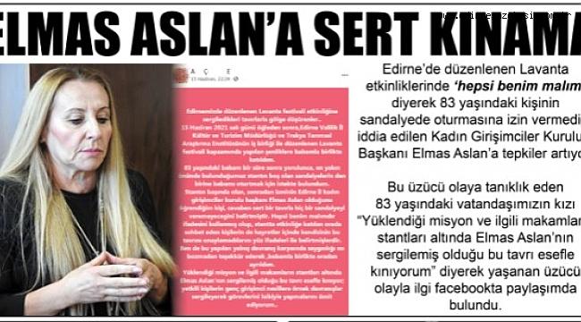 ELMAS ASLAN'A SERT KINAMA